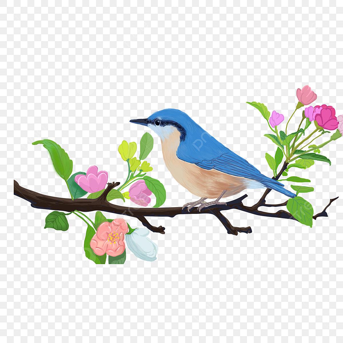 Elemento De Desenho Animado Passaro Azul Em Galhos Coloridos Cor