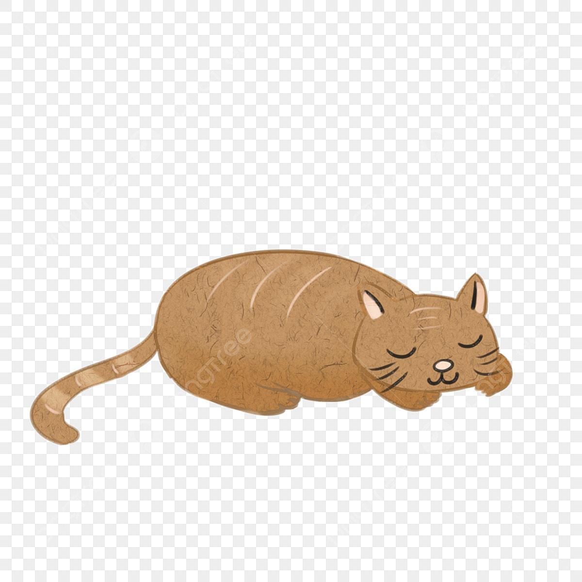Il gattino marrone che dorme su un cartone pigro può essere elemento