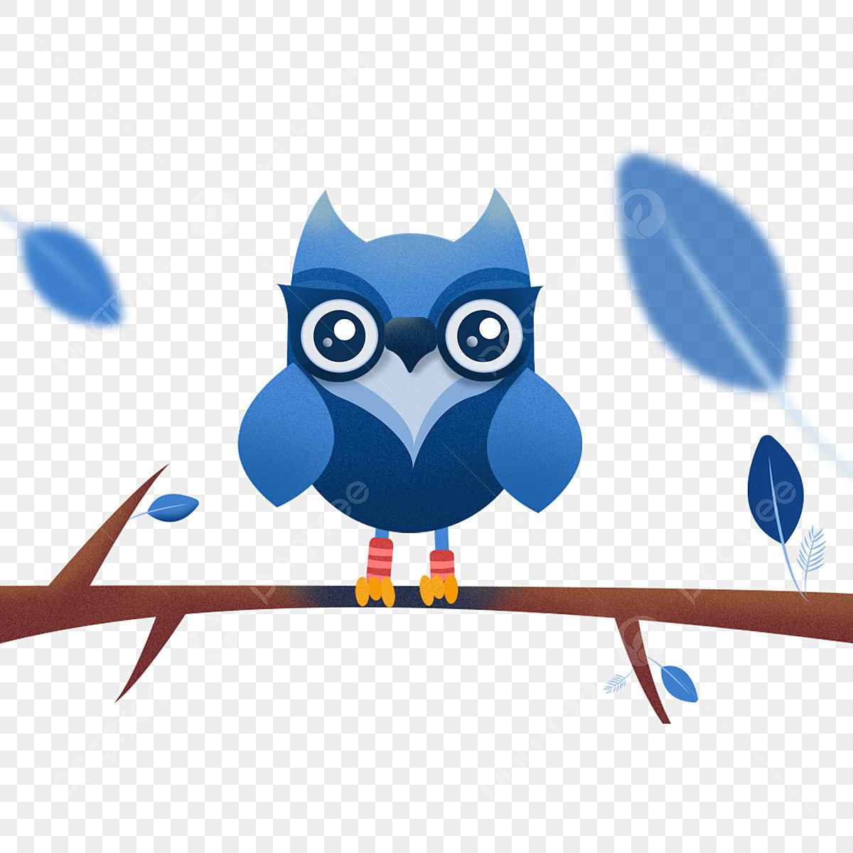 élément Hibou Bleu Plume Dessin Animé Chouette Fichier