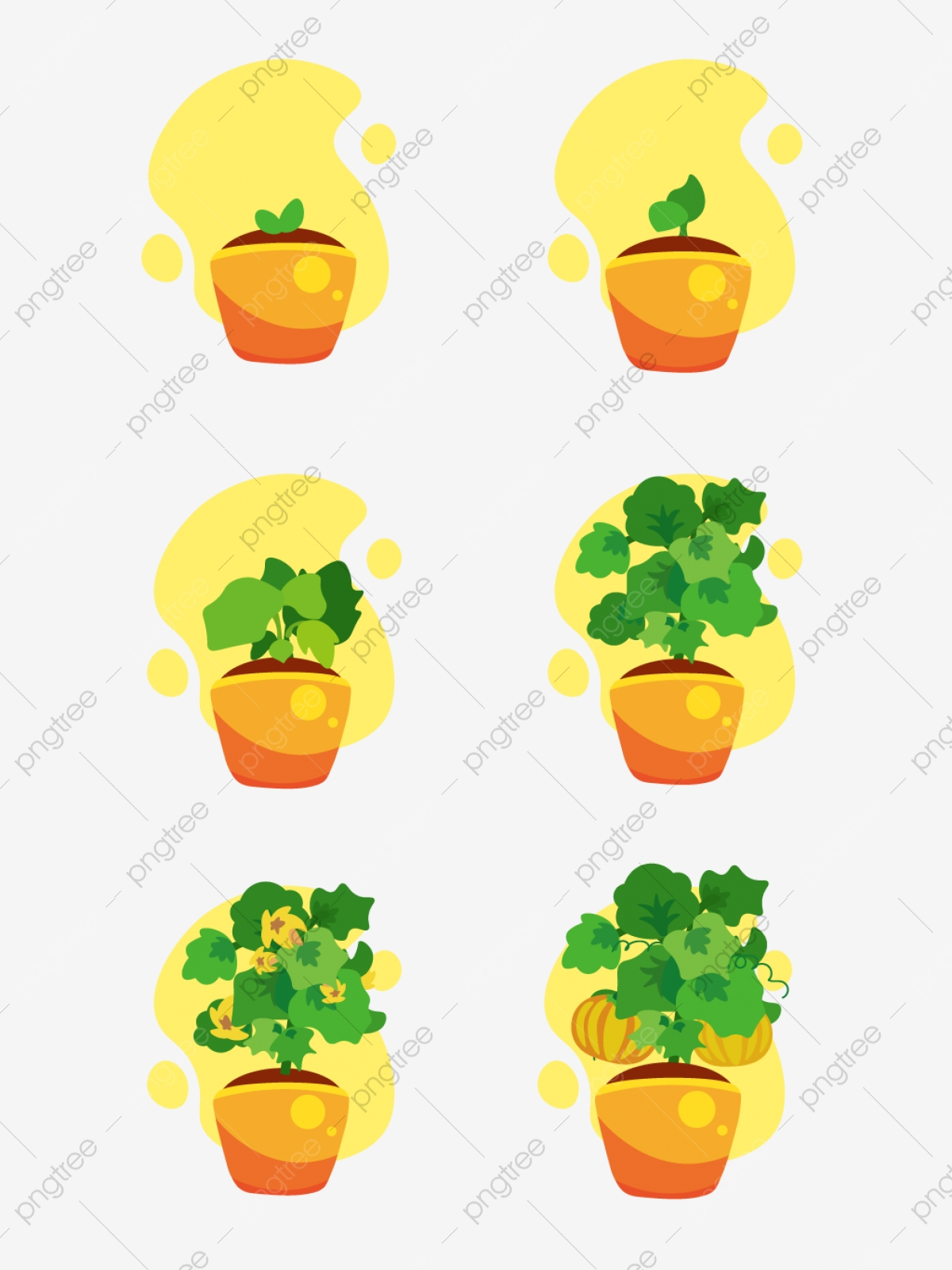 Cartoon Pumpkin Plant Growth Process Decorative Pattern Cartoon Plant Process Of Growth Png And Vector With Transparent Background For Free Download Download cute cartoon tree collection vector art. https pngtree com freepng cartoon pumpkin plant growth process decorative pattern 4029378 html