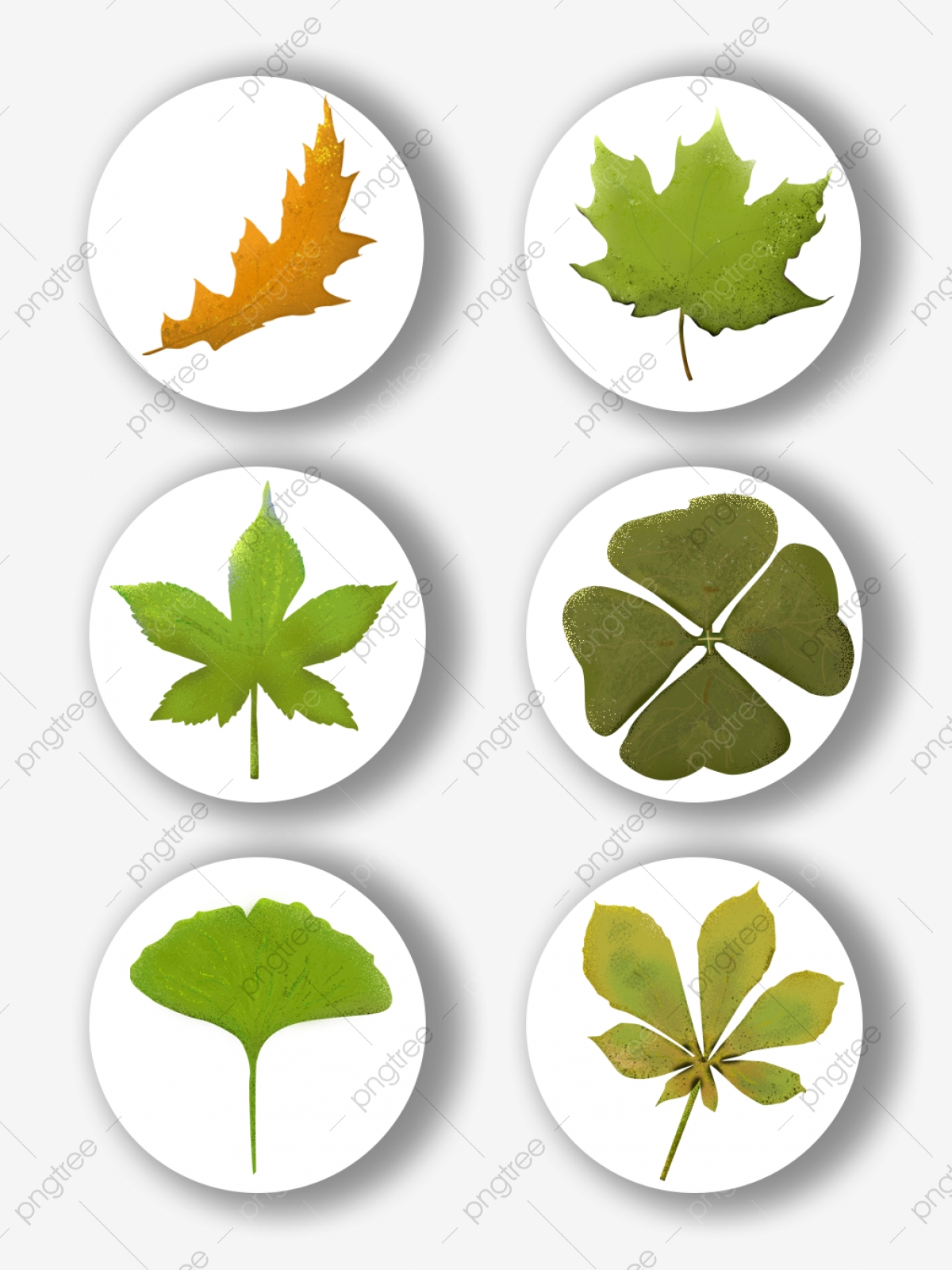 Various Kinds Of Hand Painted Leaves Commercially Available