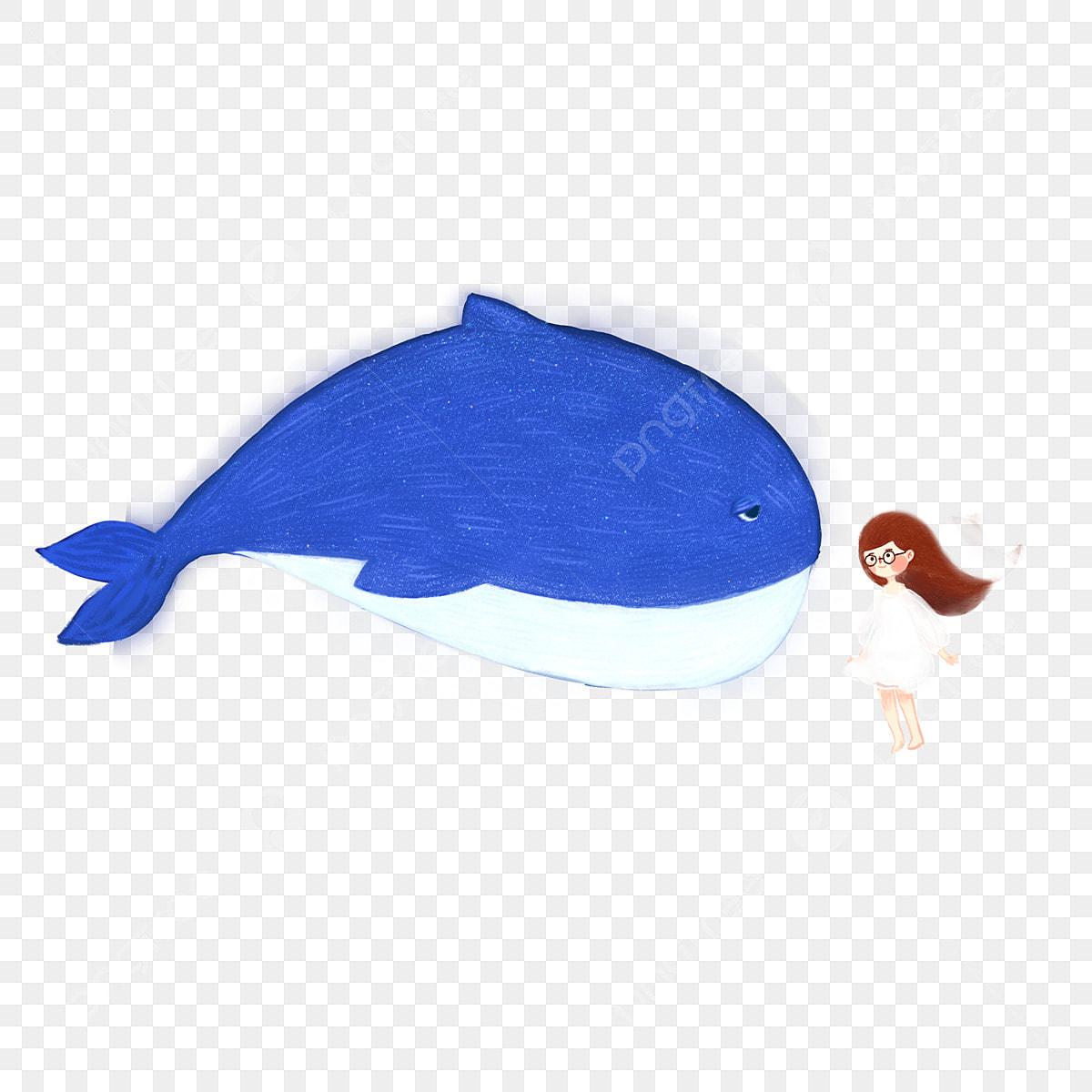 Download 770 Gambar Ikan Paus Kartun Terbaru Gambar Ikan