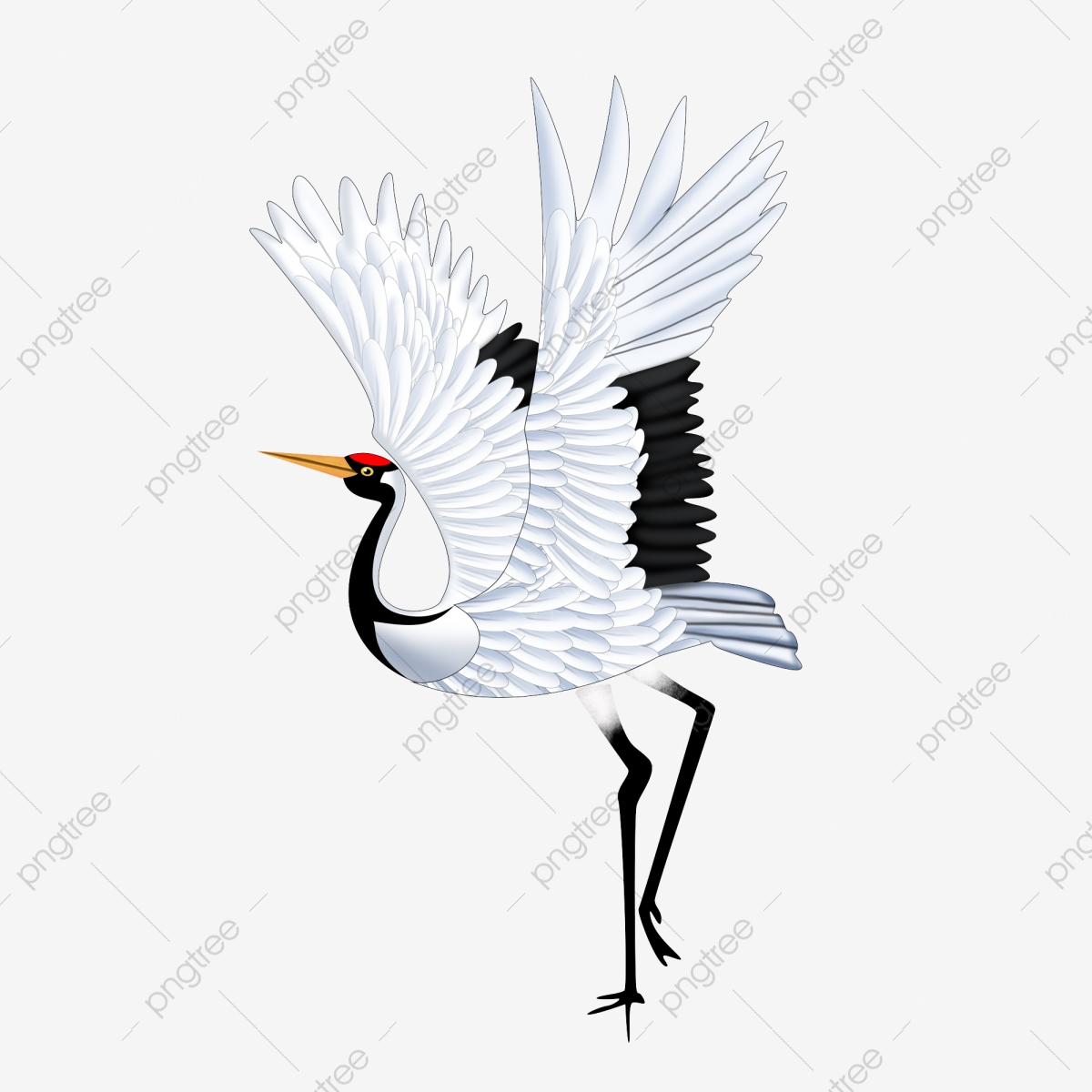 Cartoon Hand Drawn Red Crowned Crane With Commercial Elements Cartoon Hand Painted Red Crowned Crane Png Transparent Clipart Image And Psd File For Free Download Giraffe infant illustration, animal, assorted animated animals illustration, child, mammal, cat like. https pngtree com freepng cartoon hand drawn red crowned crane with commercial elements 4057456 html