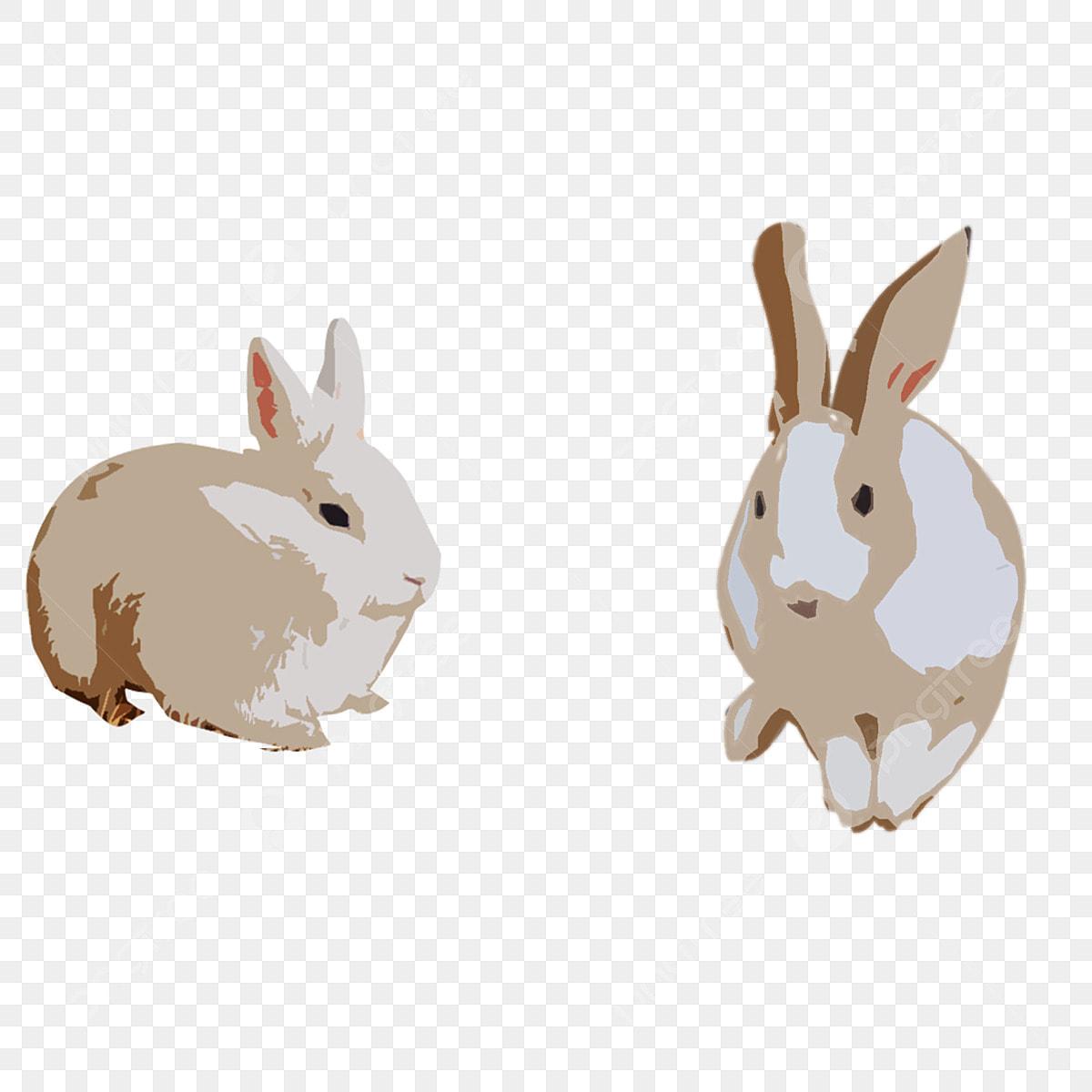 لطيف الارنب الرمادي عنصر زخرفي عنصر زخرفي الأرنب الصغير حيوان Png صورة للتحميل مجانا