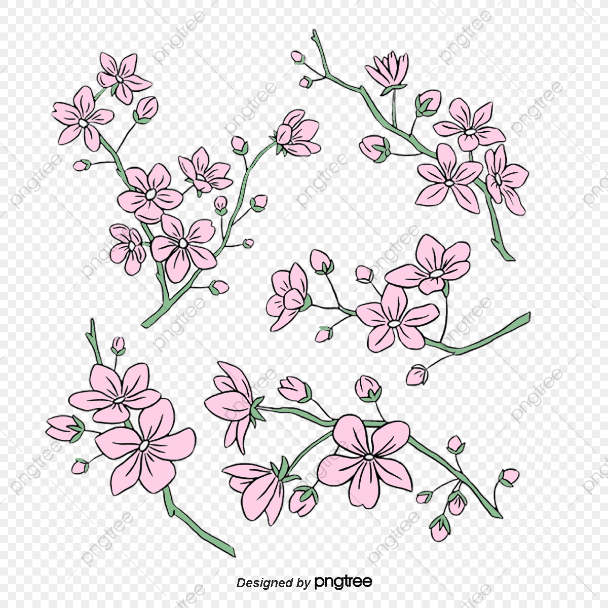 Pink Cherry Blossoms With Various Orientations Background Simple