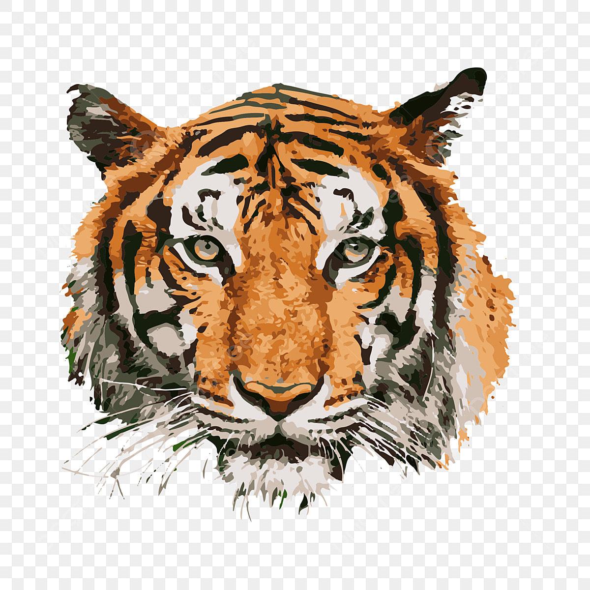 89+ Gambar Awan Harimau HD