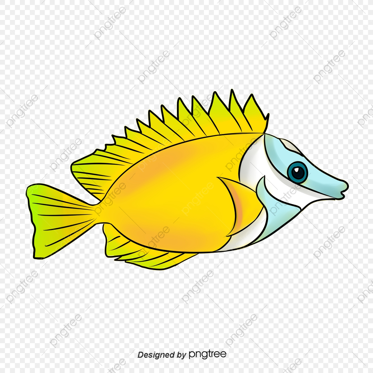 Fish Clipart Illustration Fish Clipart Png Transparent Clipart Image And Psd File For Free Download