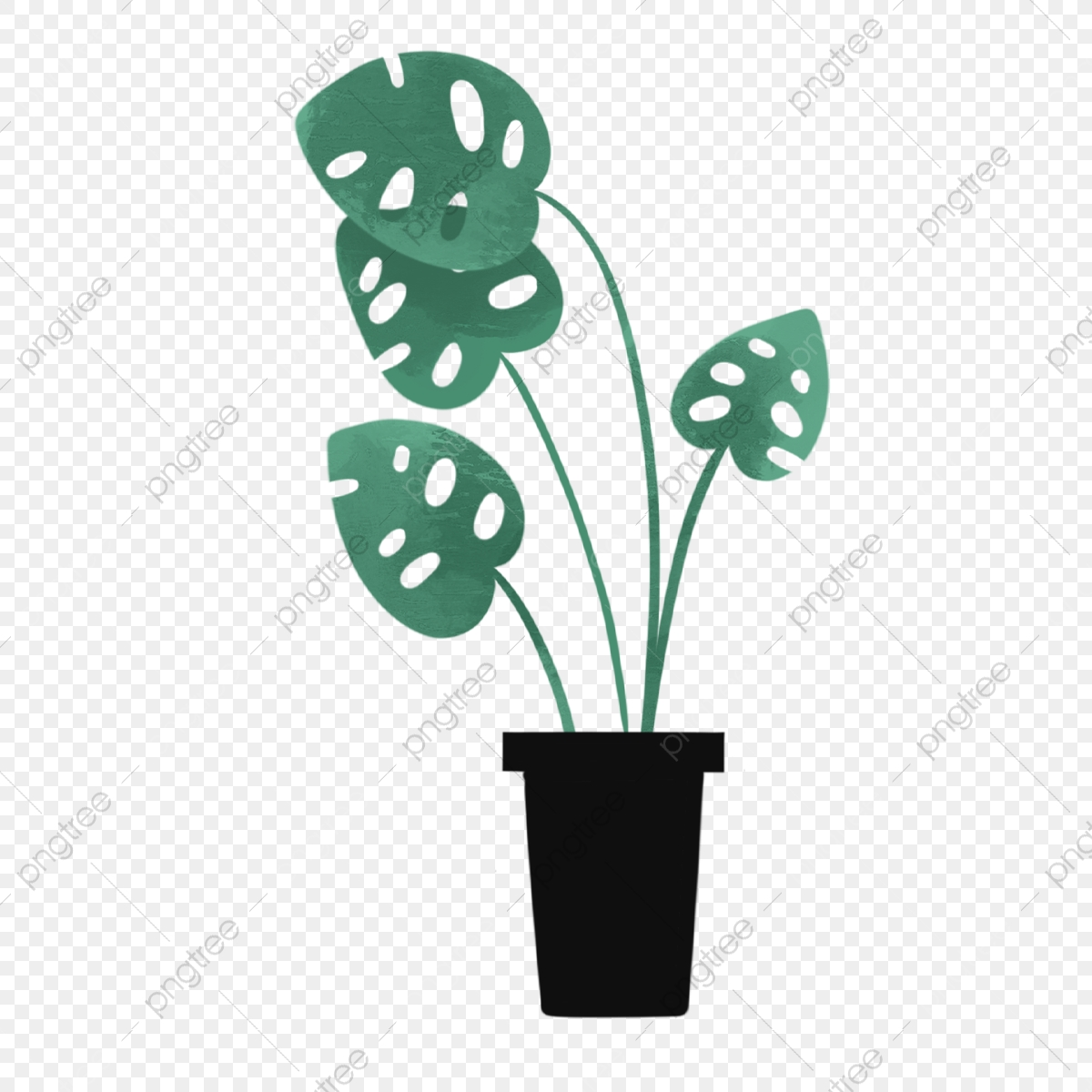 Hand Drawn Cute Plants Cute Hand Drawn Summer Png Transparent Clipart Image And Psd File For Free Download