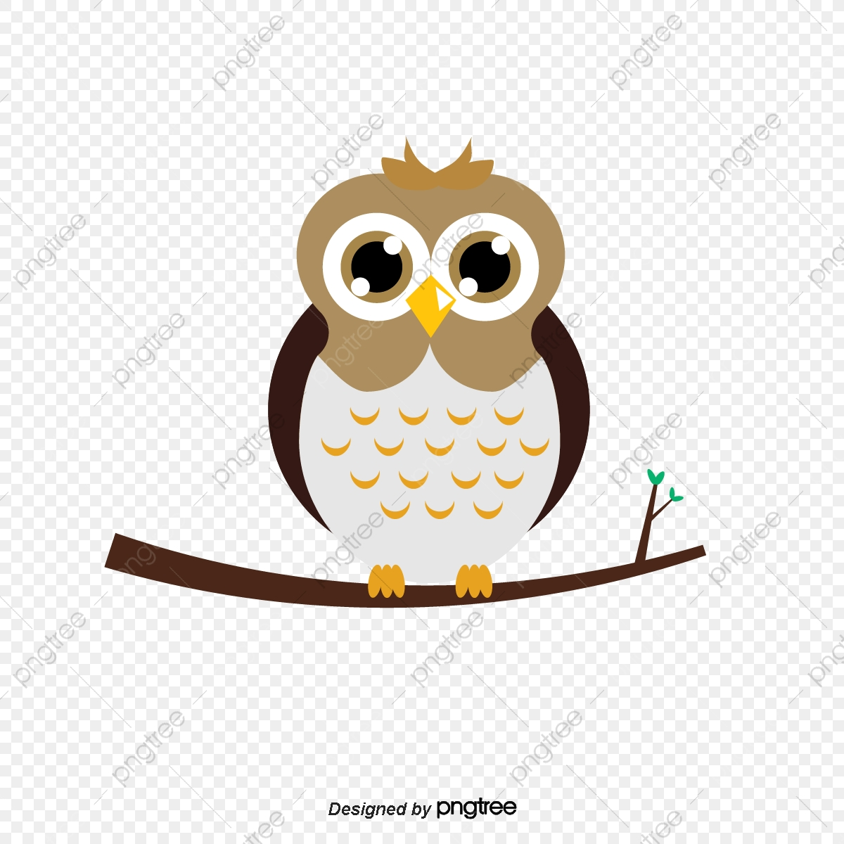 Rata Pada Cabang Burung Hantu Grafik Clip Art Kartun Comel Png