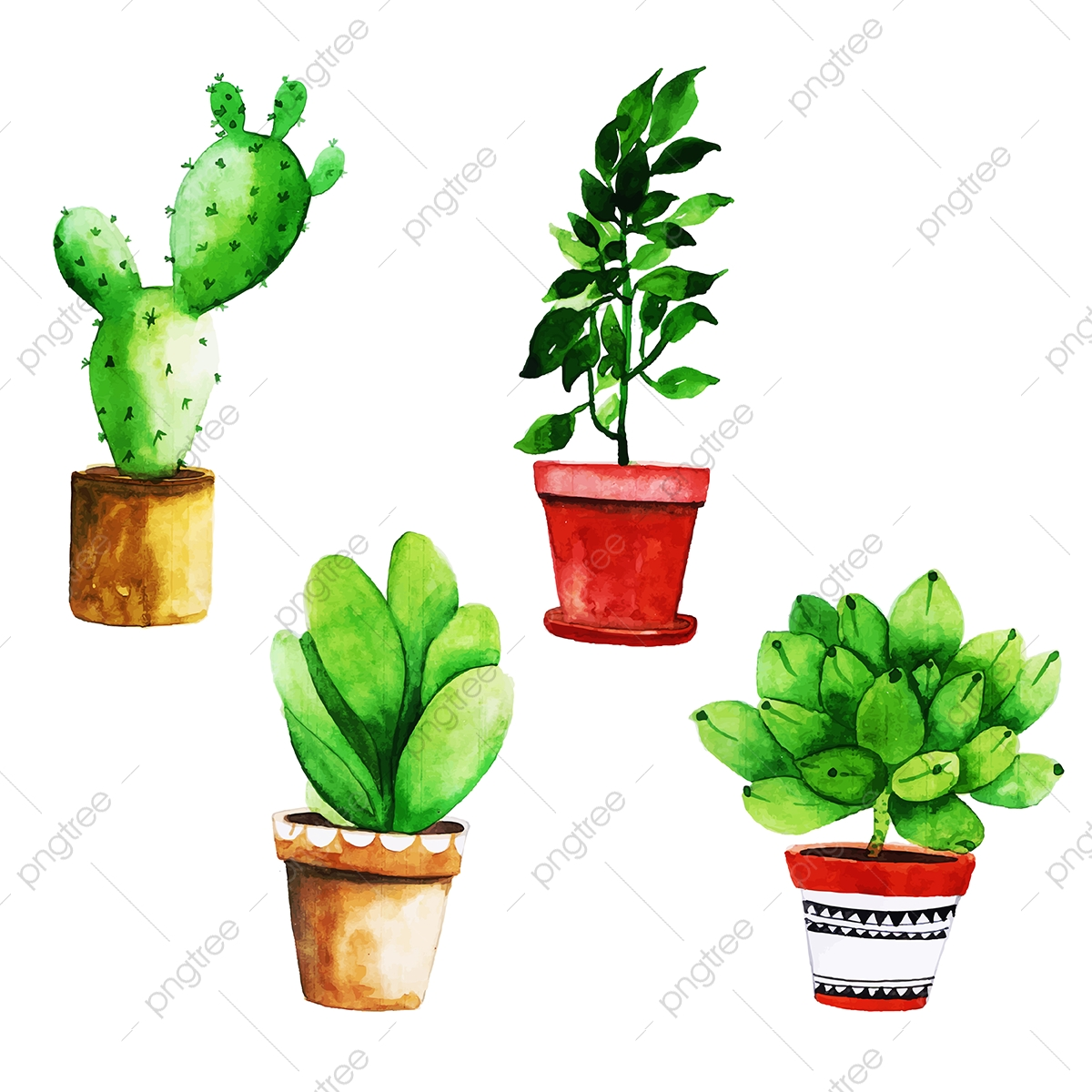 Watercolor Cactus With Pot Collection Watercolor Color Paint