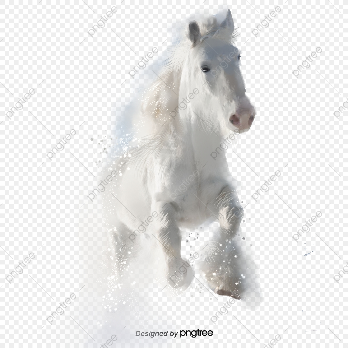 Horse Png Images Vector And Psd Files Free Download On Pngtree