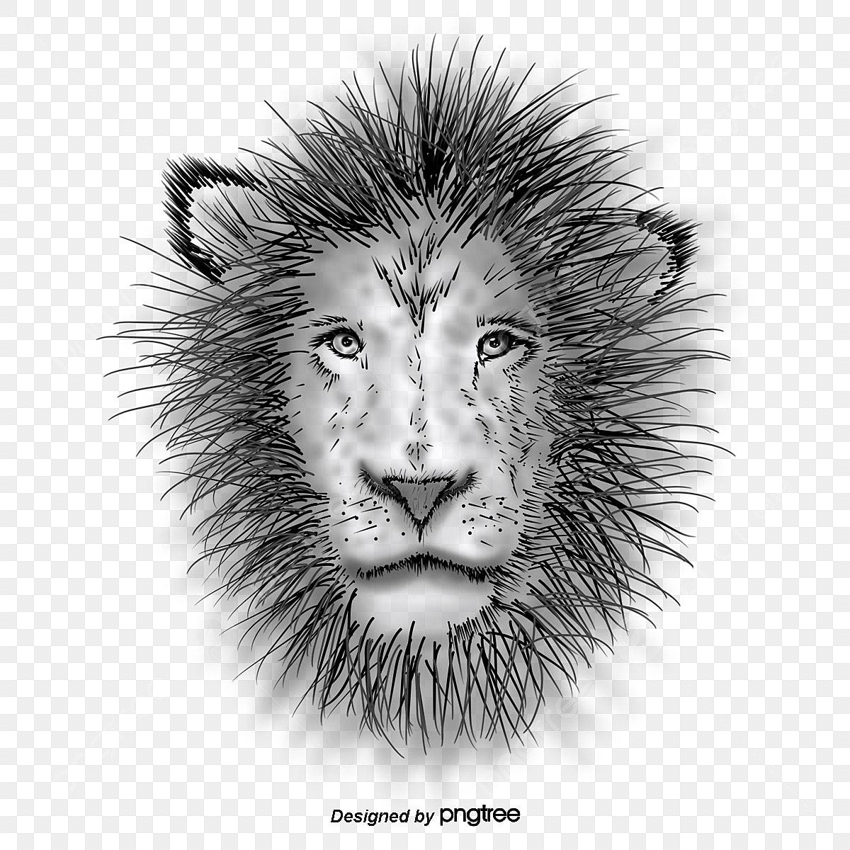 Desenho De Leao Pintado De Preto E Branco Feroz Animal Pintados