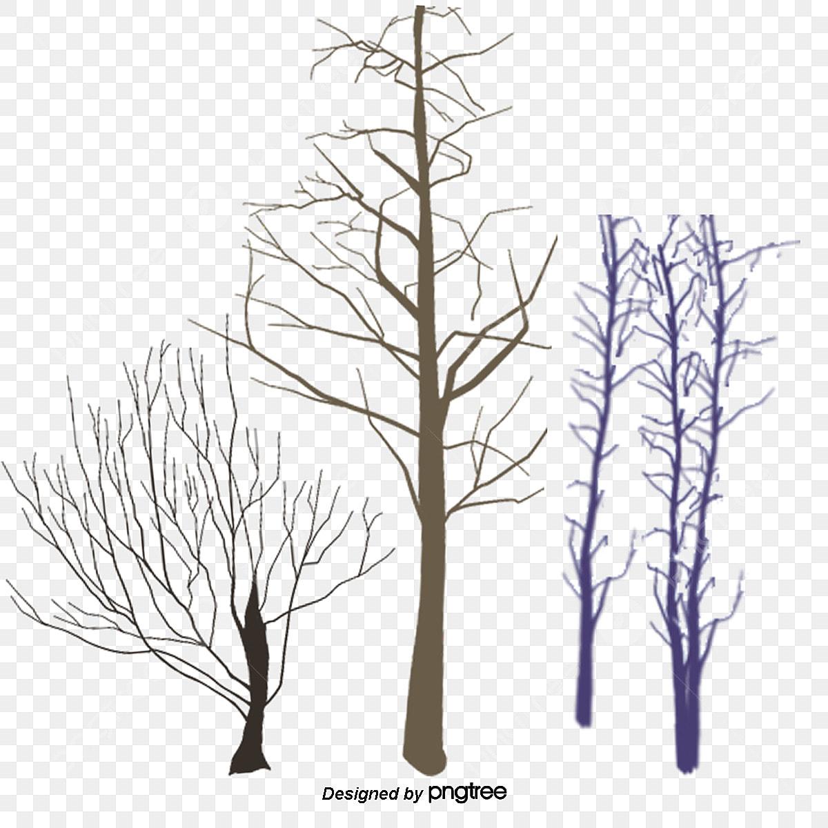 No Inverno As Arvores De Galhos Secos No Inverno No Inverno