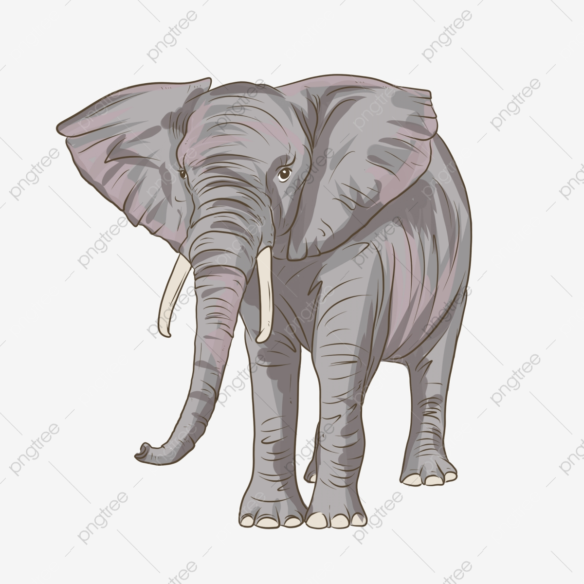 Elephant Png Vector Psd And Clipart With Transparent Background For Free Download Pngtree If you like, you can download pictures in icon format or directly in png image format. https pngtree com freepng cartoon elephant s nose 4362785 html