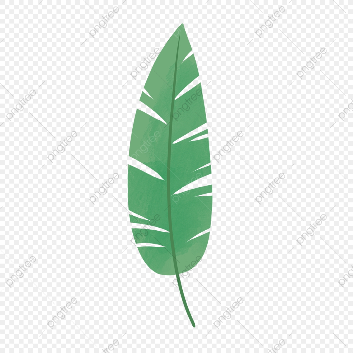 Hand Drawn Cute Tropical Leaf Tropical Drawing Nature Png Transparent Clipart Image And Psd File For Free Download