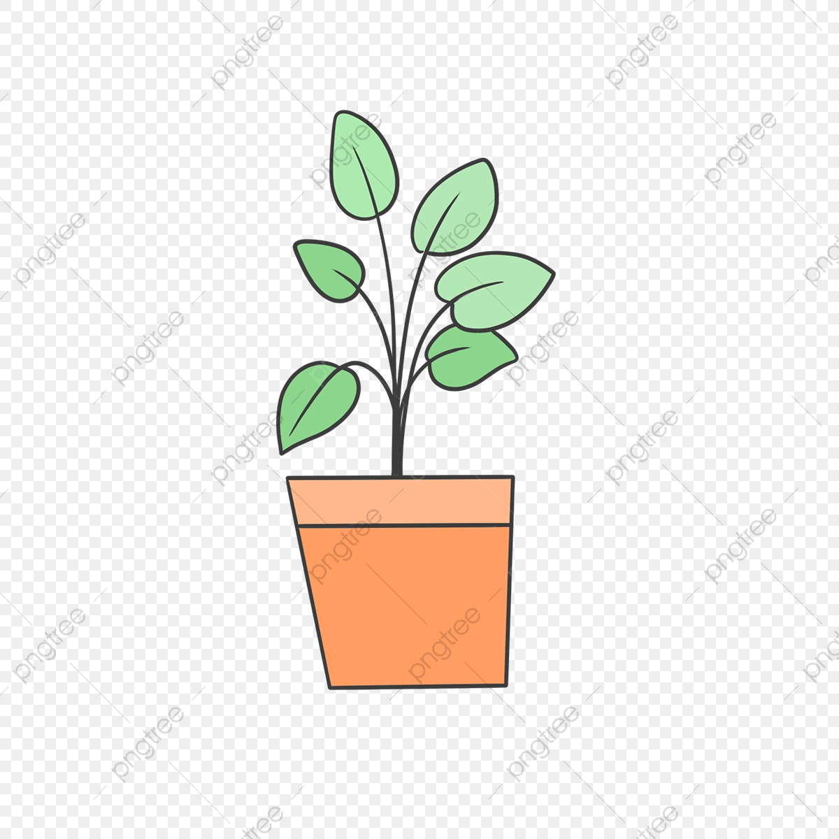 Hand Drawn Green House Plants Drawing Nature Hand Drawn Png Transparent Clipart Image And Psd File For Free Download