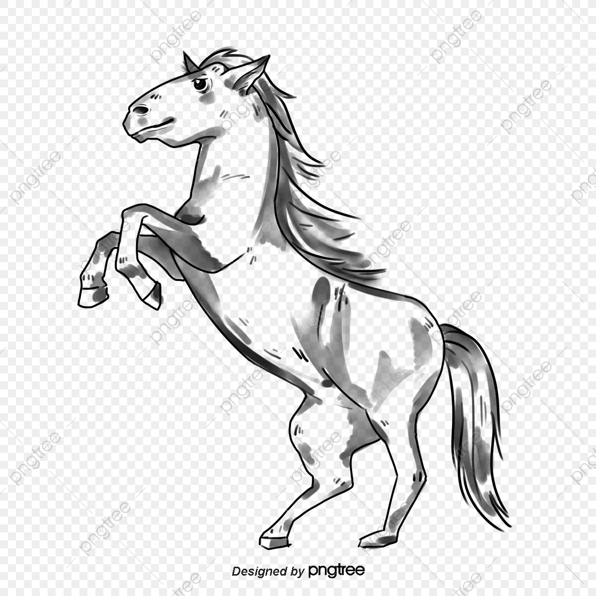 White Horse Png Images Vector And Psd Files Free Download On Pngtree