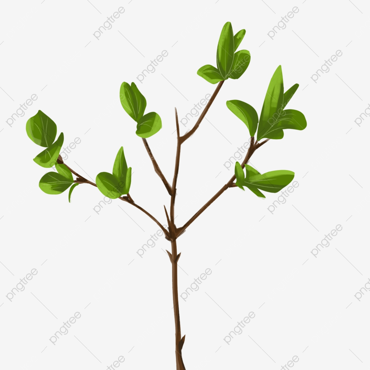 Leaves And Branches 2 Leaf Branch Branch Cartoon Png Transparent Clipart Image And Psd File For Free Download