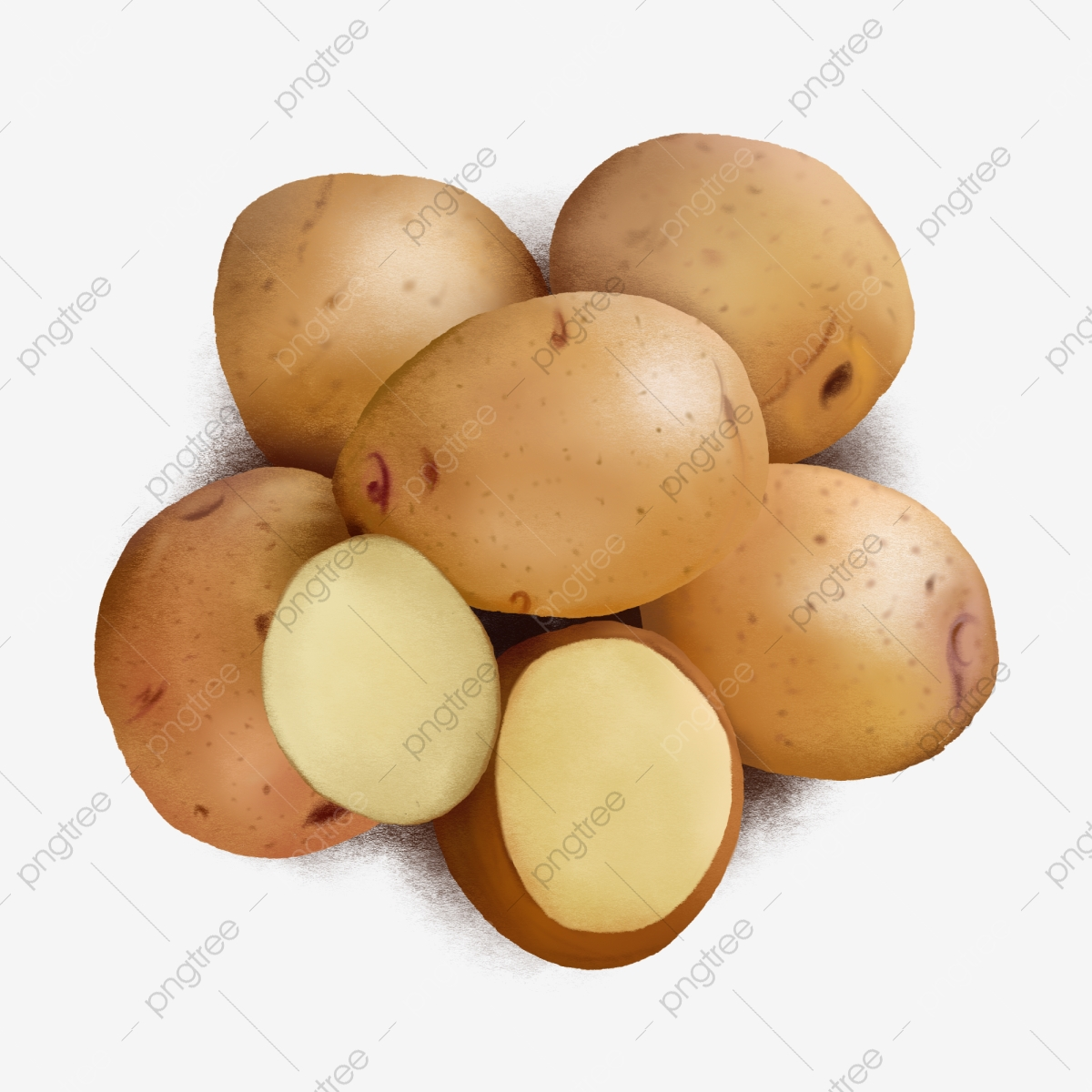 Potato Potatoes Sweet Potatoes Yam Png Transparent Clipart Image And Psd File For Free Download All images and logos are crafted with great workmanship. https pngtree com freepng potato 4361347 html