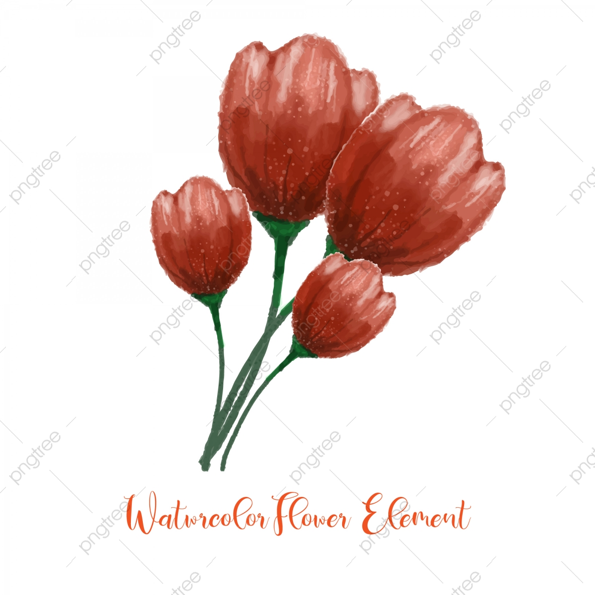 Bunga Mawar Cat Air Bunga Cat Air Elemen Dengan Indah Gradasi