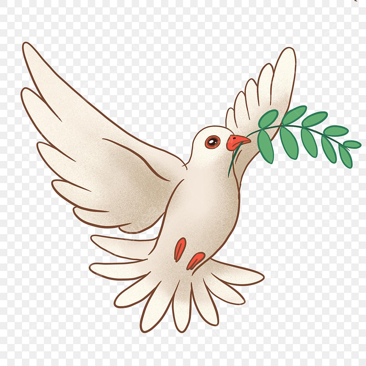 92+  Gambar Burung Merpati Putih Kartun  Paling Keren Gratis