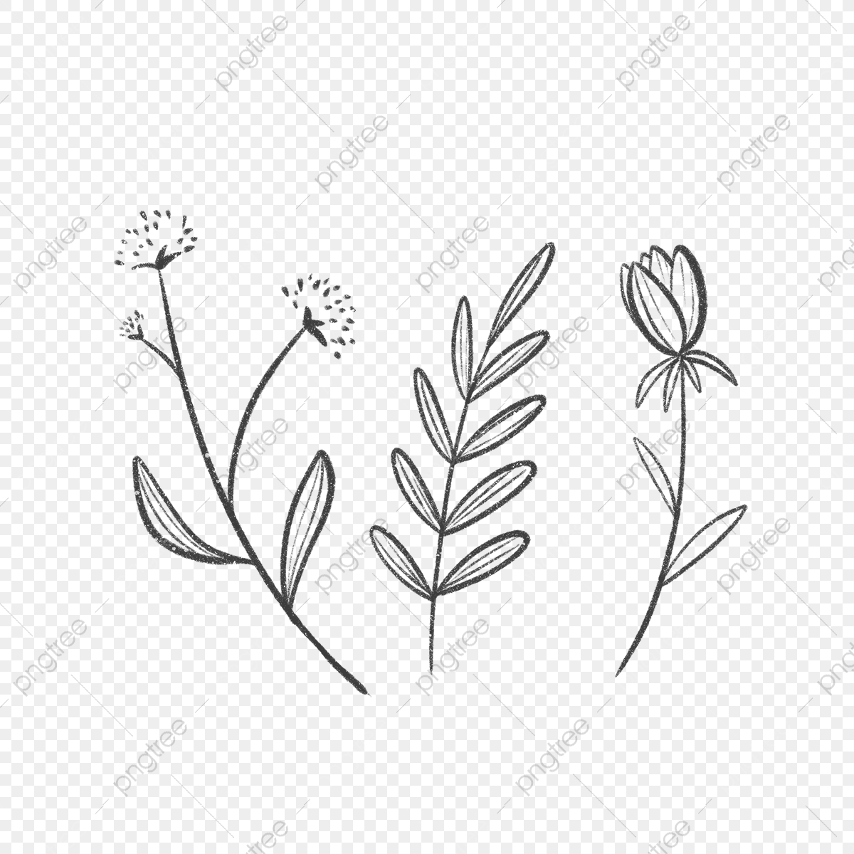 Trois Simples Tapisse De Feuilles Et De Fleurs Dessin La Nature