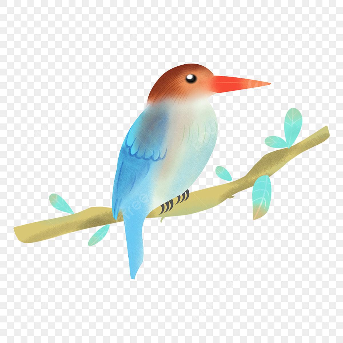 Burung Haiwan Tangan Yang Ditarik Unsur Burung Bahan