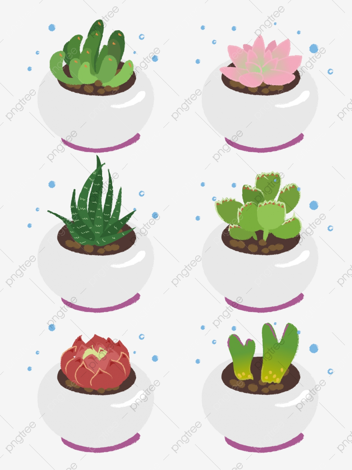 Hand Drawn Various Cute Potted Succulents Hand Painted Cute Potted Png And Vector With Transparent Background For Free Download