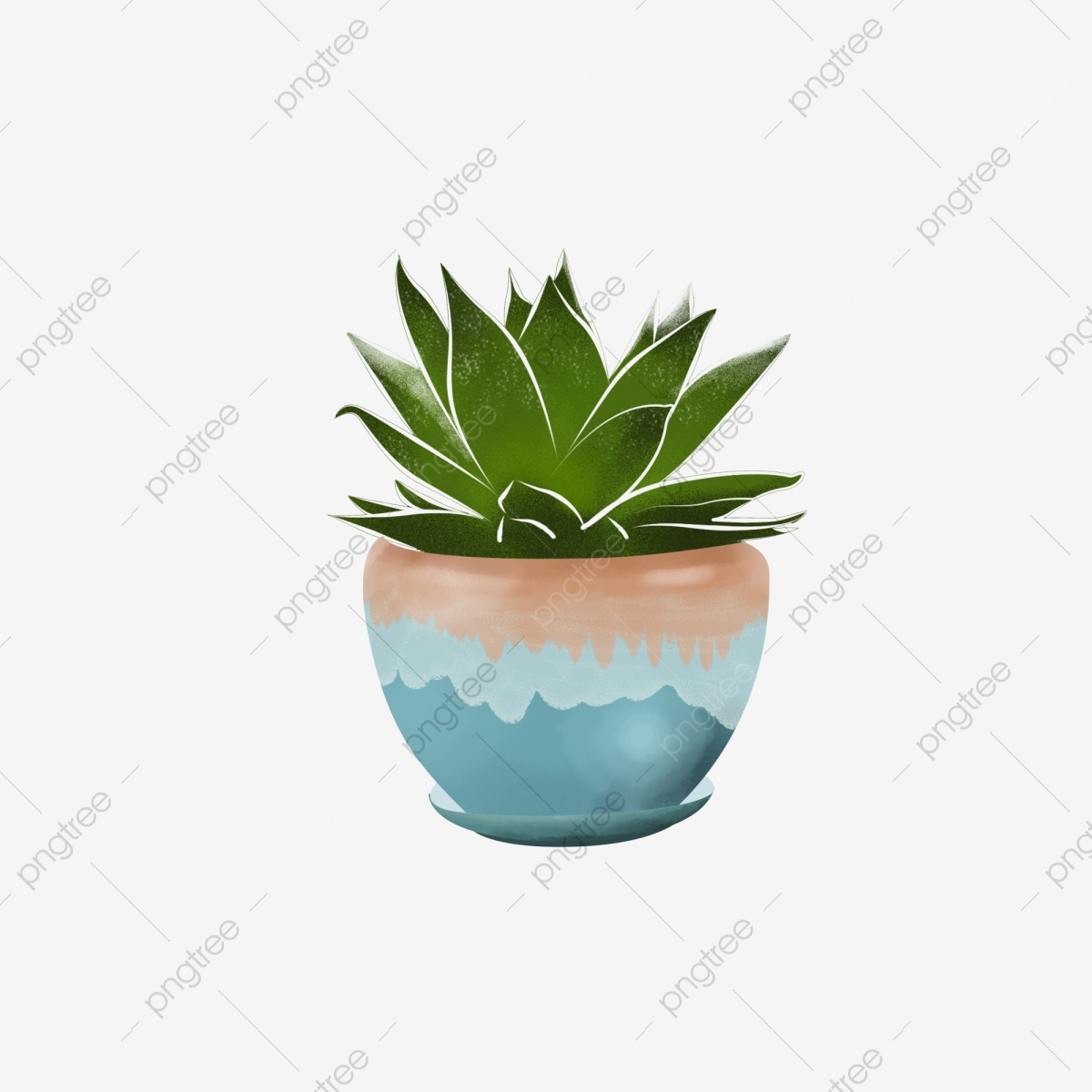 Succulent Potted Hand Drawn Fleshy Plant Potted Png Transparent Clipart Image And Psd File For Free Download