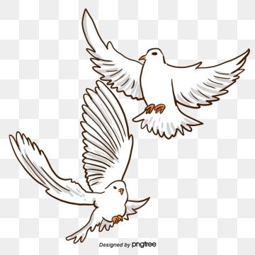 Passaros Voando Png Vetores Psd E Clipart Para Download Gratuito