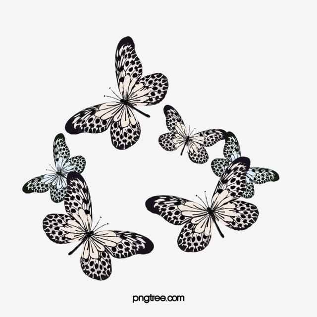 Hewan Serangga Kupu Kupu Hitam Hitam Kupu Kupu Serangga Png Transparan Gambar Clipart Dan File Psd Untuk Unduh Gratis