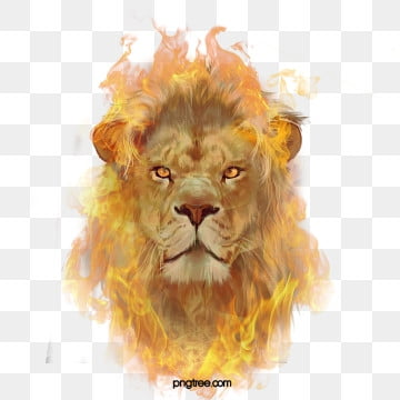 Roaring Lion Outline Png Images Vector And Psd Files Free Download On Pngtree Lion face side view outline drawing. pngtree