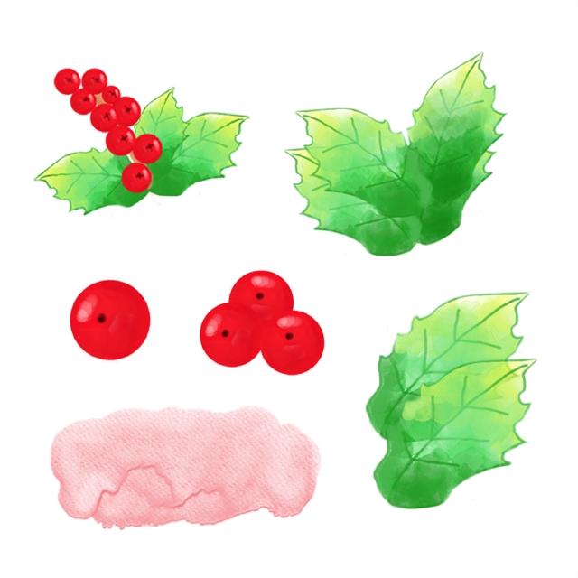 تصميم أوراق الشجر بالألوان المائية ألوان مائية التوت بيري Png وملف Psd للتحميل مجانا