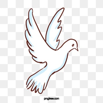 White Dove Png, Vector, PSD, and Clipart With Transparent