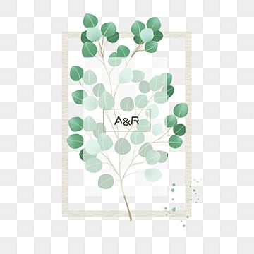green minimalist fresh hand drawn eucalyptus leaves wedding border, Eucalyptus Leaves, Wedding Border, Frame PNG and PSD