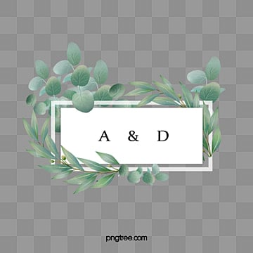 simple and fresh hand painted eucalyptus leaves wedding border, Eucalyptus Leaves, Hand Painted, Background PNG and PSD