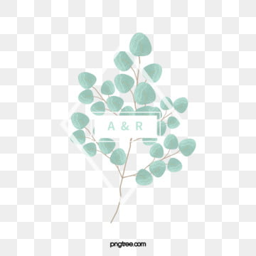 simple and fresh hand painted eucalyptus leaves wedding border, Wedding, Eucalypti, Frame PNG and PSD