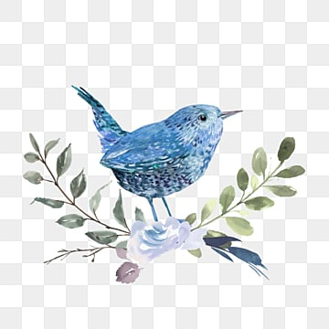 blue bird watercolor hand drawn animal, Bird, Blue, Flowers And Plants PNG and Vector