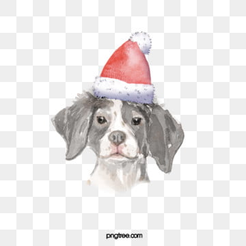 christmas hat black and white dog elements, Dog, Watercolor, Hand Painted PNG and PSD