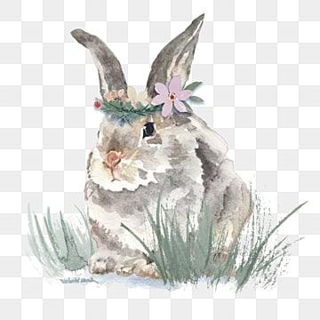 gray rabbit  watercolor hand drawn elements, Gray, Rabbit, Garland PNG and PSD