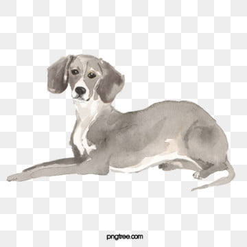 gray watercolor pet dog element, Dog, Black And White, Gray PNG and PSD