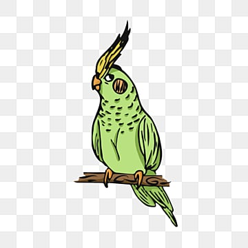 green parrot cartoon element, Parrot, Green, Lovely PNG and PSD