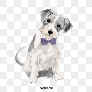 hand drawn cartoon grey animal dog element, Dog, Soft Pale, Watercolor PNG and PSD
