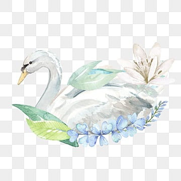 hand drawn cartoon white swan floral elements, Swan, White, Flowers And Plants PNG and PSD