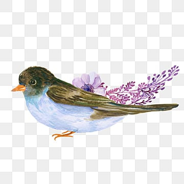 hand drawn floral bird fresh cartoon element, Bird, Illustration, Animal PNG and PSD