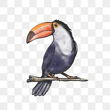 toucan seabird watercolor hand drawn elements, Black, Blue, Toucan PNG and PSD