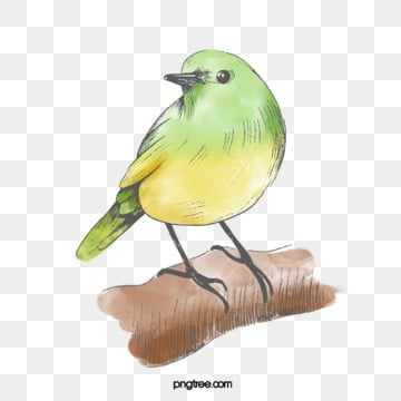 yellow green bird hand drawn elements, Little Bird, Yellow, Cartoon PNG and PSD