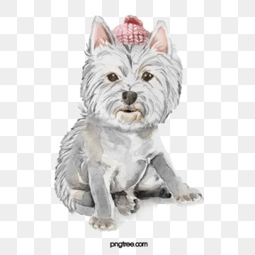 pink hat gray puppy element, Watercolor, Dog, Cartoon PNG and PSD