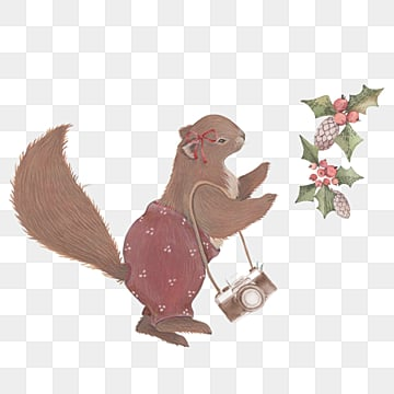 squirrel camera plant christmas cartoon hand drawn elements, Squirrel, Camera, Plant PNG and PSD