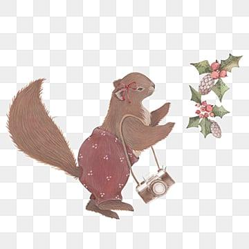 squirrel camera plant christmas cartoon hand drawn elements, Squirrel, Camera, Plant PNG and PSD